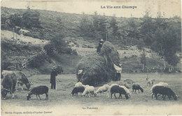 Cpa 48 – La Vie Aux Champs – La Fenaison - France