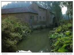 WINTERSHOVEN Bij Kortessem (L.) - Molen/moulin - De Gewezen Watermolen Van Wintershoven Voor De Brand Van 1993 - Kortessem
