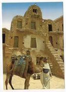 """Tunisie--2000--Chameau Et Chemelier (lieu à Déterminer)  Cpsm 15 X 10  éd Mirage--beau Timbre Fleur-""""Roses"""" - Tunesië"""