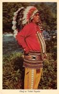 THEME AMERINDIENS / Chief In Tribal Regalia - Amérique