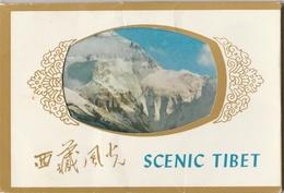 Pochette De 11 CPM Scenic Tibet - Tibet