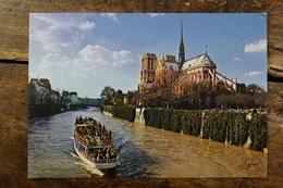 75, LA CATHEDRALE NOTRE DAME ET LA SEINE - Notre Dame De Paris