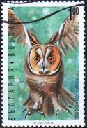 Bulgaria1992  1 V Used  Owl - Owls