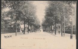 Verviers  Avenue De Spa  1902 - Verviers
