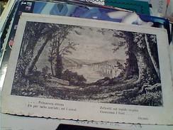 POESIA  OVIDIO PRIMAVERA ETERNA .......N1917  FX10854 - Filosofia & Pensatori