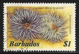 Barbados, Scott # 656 Used Marine Life, 1985 - Barbados (1966-...)