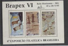 Bresil Prehistory Prehistoire Peintures - Préhistoire