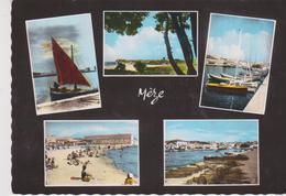 CPSM 10X15  Multi-vues MEZE (34) : Retour De Pêche / Les Voiliers / La Plage / Le Port / Vue Gale - Mèze