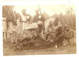 """NIGER -  """"Les Faouas Travaillent En Musique, Les Haoussas égorgent Les Boeufs"""", Photo Originale - Africa"""