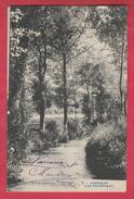 """Jodoigne - Lieu Dit """" Les Vendanges """"  - 1909 ( Voir Verso ) - Jodoigne"""