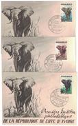 1953 COTE D´IVOIRE - LOT DE 3 CARTE MAXIMUM (ELEPHANT) De La 1ere EMISSION PHILATELIQUE DU TIMBRE Cachet ABIDJAN