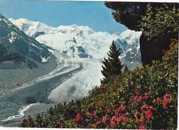 Cartolina-svizzera -morteratschgletscher. - Islanda