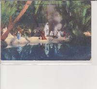 Lehnert. Campement Dans L'oasis écrite  TBE - Algeria
