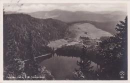 Feldsee - Schwarzwald * 31. 8. 1931 - Feldberg