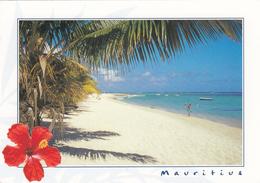 G , Cp , ÎLE MAURICE , Plage Du Morne - Mauritius