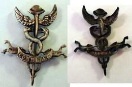 """Bel Insigne CADUCEE D'HERMES  Symbole Du """"COMMERCE""""  , Deux Serpents, Ailes -  Haut 4.5 Cm - Professionals / Firms"""