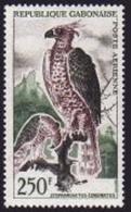 Gabon, 1964, Eagle, Bird, Airmail, MNH, Michel 207
