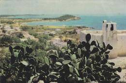 ESPAGNE----BALEARES---SANTA EULALIA DEL RIO-----voir 2 Scans - Ibiza