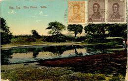 ARGENTINA - SALTA - MIRA FLORES 1920 Arg52 - Argentina