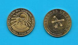 Médaille L'île  Des Lémuriens  Le Parc Des Félins 77540 Nesles France Trésors De Fance  2010 /Arthus Bertrand /33NAT - Francia