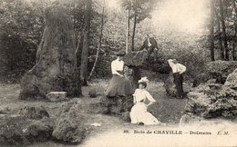CPA BOIS DE CHAVILLE - DOLMENS - Chaville