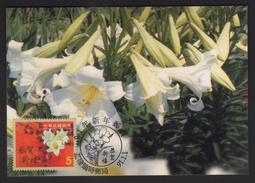 2001's Taiwan R.O.CHINA -Maximum Card- Personal Greeting Stamps - 1945-... Repubblica Di Cina