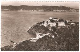 Ile De Port-Cros - Vue Sur Le Fort Et L'Ile De Bagaud - 1952 - Autres Communes