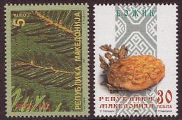 Macedonia 1999 Christmas And New Year, Religion, Christianity, Set MNH - Macédoine