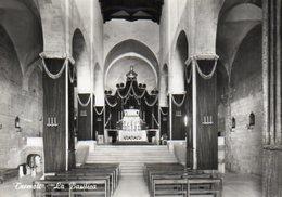 Termoli - La Basilica - Altre Città