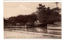 CONAKRY JARDINS - Guinea Francese
