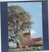 CORBIERES  ( 04 )   N° 159   Le Cabanon - Otros Municipios