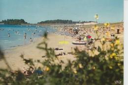 Mesnil St Pere   Le Lac De La Foret D Orient  La Plage - France