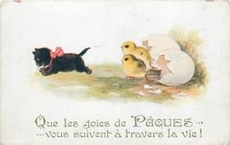 CHAT - CAT -  CHAT ATTITUDE HUMANISE - PAQUES - POUSSINS - CPA ILLUSTREE - édit; BARNES - COMIQUE - N°3096. - Chats