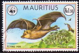 MAURITIUS 1978 SG #559 1r50c Used Flying Fox - Mauritius (1968-...)
