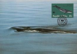 Palau - 1983 - N°Yv. 15 - Baleine - Carte Maximum - WWF - Whales