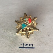 Badge (Pin) ZN004351 - Wrestling Federation / Association / Union FILA (Fédération Internationale Des Luttes Associées) - Wrestling