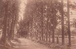 Etablissement De Carlsbourg Avenue De La Grotte