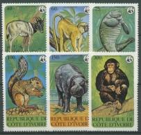 Elfenbeinküste 1979 WWF Naturschutz Tiere Schimpanse Flußpferd 620/25 Postfrisch - Côte D'Ivoire (1960-...)