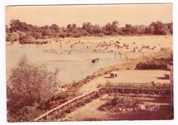 SAINT THIBAULT  18  La Plage Sur La Loire ( Couleur Passées )1961 - Autres Communes