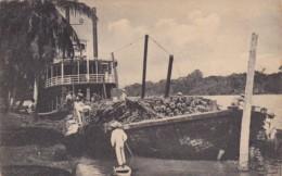 Honduras San Pedro Sula Shipping Bananas With Steamer