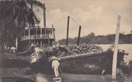 Honduras San Pedro Sula Shipping Bananas With Steamer - Honduras