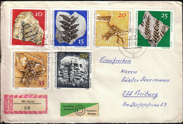 Germany Kyritz 1973 / Fossils