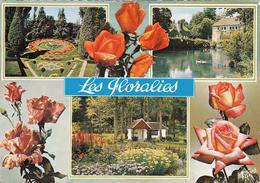 G , Cp , FLEURS , Orléans La Source - Olivet , Souvenir Des Floralies , Multi-Vues - Fiori