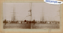 GRANVILLE (50)  PHOTO STEREOSCOPIQUE -  LE PORT -  TERRE - NEVAS   (Fin 1800 - Début 1900) - Photos Stéréoscopiques