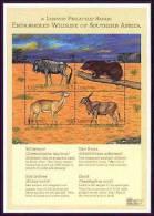 LESOTHO   1246 MINT NEVER HINGED MINI SHEET OF ENDANGERED WILDLIFE & ANIMALS   # M-0628-2  ( - Zonder Classificatie