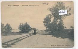 CPA -Belgique - Heide -Calmpthout - Wandeling Door De Duinen (petits Défauts)