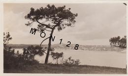 VUE DE LA TOUR DE KERROC'H PRISE DU BOIS GUILBEN PAIMPOL (22 Cotes D'armor ) - PHOTO ORIGINALE 1932 - 10X7 Cms - Plaatsen