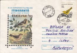 55067- SPARROW, BIRD, COVER STATIONERY, 1996, ROMANIA