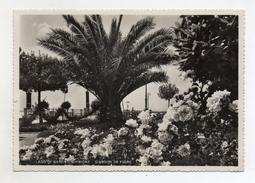 Sirmione (Brescia) - Lago Di Garda - Giardini In Fiore - Viaggiata Nel 1942 - (FDC3004) - Brescia