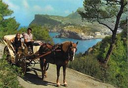 MALLORCA - Puerto De Soller - Cheval - Attelage - Mallorca